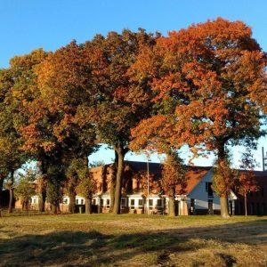 Natuurbegraafplaats Koningsakker abdij, Estia Uitvaarten