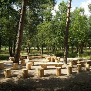 Natuurbegraafplaats Heiderust boomstammen buitenplaats, Estia uitvaarten