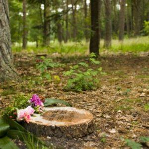 Natuurbegraafplaats Heijdepol, Estia Uitvaarten